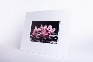 Foto UV-Direktdruck